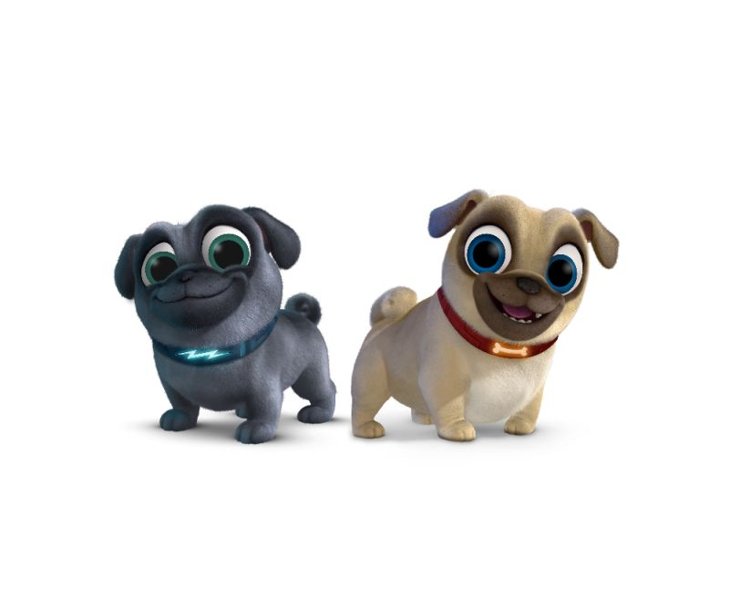 We Do Not Know Much About Puppy Dog Pals Other Than The Picture You See Above And Quick Blurb From Disney Juniors Site Below