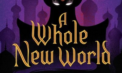 A Whole New World A Twisted Tale by Liz Braswell
